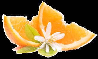 Ресторан Апельсин